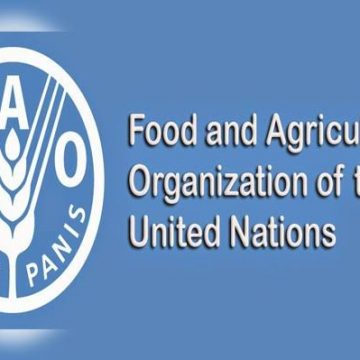 FAO and OCHA join hands on Humanitarian Affairs in Balochistan