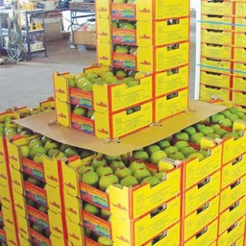 NA Committee on Agriculture resolves Mango Export Issues