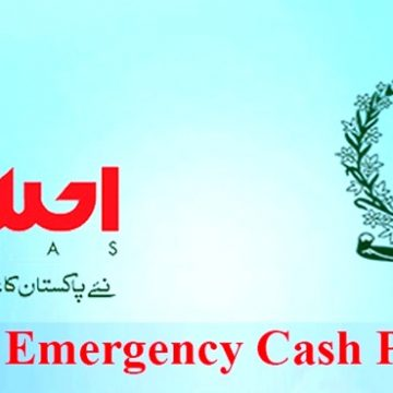 Details of Emergency Cash distributed amount so far in provincial and region