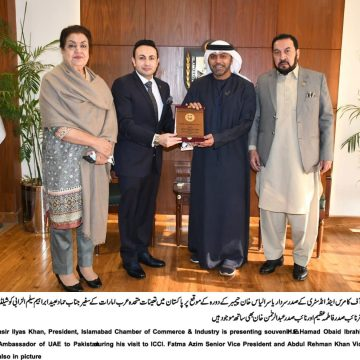 UAE wants Economic Roadmap with Pakistan to boost bilateral trade