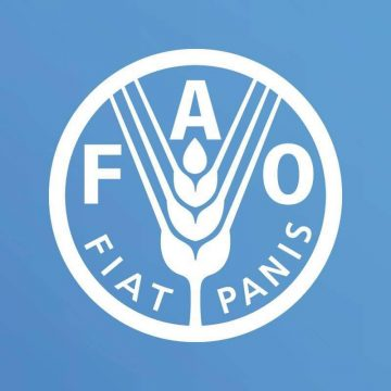 FAO – UNITED NATIONS